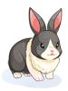 Costume: Panda Rabbit [0]