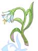 Illusion Flower